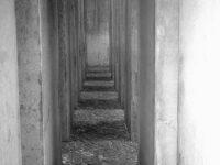 Jüdisches Museum - Der Garten des Exils